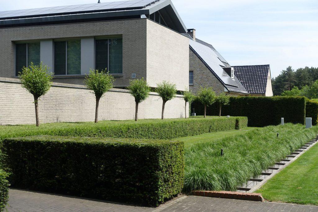 Moderne achtertuin