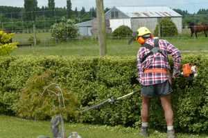 onderhoud van tuin